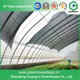 야채 또는 정원 또는 꽃 또는 농장 플레스틱 필름 온실