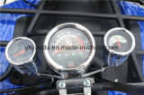 Four Head Lamp ATV Sports avec Big Storage