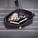 새로운 땋는 쉘 부대 또는 소형 핸드백 /Shoulder 여자 마약 밀매인 형식 (GB#196)