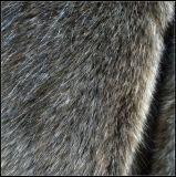 高品質の長い山Foxののどの毛皮