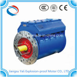 Motor Motorprueba De Explosiones Refrigerado Por des Agua-4kw-355kw