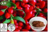 Reine natürliche Oganic Wolfberry Auszug-Polysaccharide 10%-40%; Wolfberry Auszug-Puder; Goji Puder