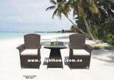 Jardin Furniture/Outdoor Furniture/Meubles Chair et Table de Rattan