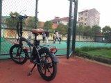 "Aluminiumrahmen-faltbares elektrisches Fahrrad des Cer-20 "" mit Lithium-Batterie"