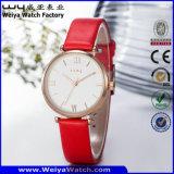 Relógio do fabricante das senhoras de quartzo da cinta de couro (Wy-070B)