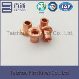 5X5mmの銅によってめっきされる平らなヘッド完全な管状の鋼鉄リベット