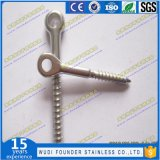 Stainless Steel Lag Eye Screw