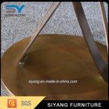 Vector de la cara del acero inoxidable del oro de los muebles de la sala de estar