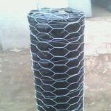 China fornecimento fábrica de Malha de Arame Hexagonal Galvanizado