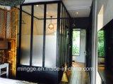 Doppelte ausgeglichenes Glas-heiße galvanisierte Retro Stahltüren
