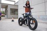 Elektrisches Fahrrad des neuen Modell-2018 mit leistungsfähigem Motor