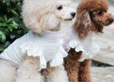 [سونمّر] بنت كلب [ت-شيرت] 100% قطر [ت-شيرت] صغيرة كلب قميص ليّنة زيّ محبوب ثوب