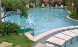 Filtro Multifunctional da piscina de Intergrative da venda quente