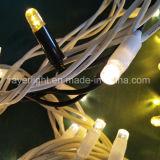 Luz de seqüência do LED Commecial Decoração de férias de bolha de luzes de Natal