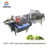 와동 유형 식물성 세탁기/기업 와동 유형 양상추 탈수 세탁기