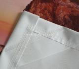 Impresión modificada para requisitos particulares al aire libre que hace publicidad de la impresión de Digitaces de la bandera del PVC del vinilo (SS-VB22)