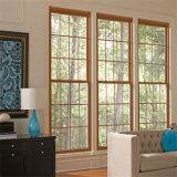 Grande fenêtre coulissante en aluminium noir avec un filet de la vitre coulissante