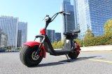 1000W elektrische Scooter met de Staaf van de Hand 2 Reeksen van de Batterij