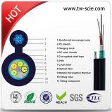 Fabricante profesional de 24 núcleos Auto Apoyo Cable de fibra óptica GYTC8S