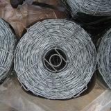 Fazenda galvanizado trançado duplo fio de conexão farpada de Esgrima