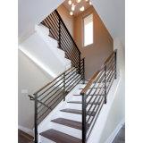 Villa House escadaria, grades de aço carbono revestido de pó haste sólida do Trilho
