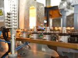 Автоматическая бутылка напитка 6 полостей делая дуя машину