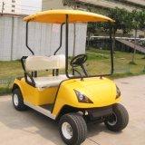 Carrello con errori di golf elettrico di 2 Seater (DG-C2) con Ce approvato