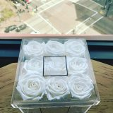 Cadre acrylique personnalisé de Holde du divers module 9 de Rose pour la fleur