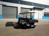 Zhongyiのブランド6のシート貨物ボックスが付いている電気クラブ車