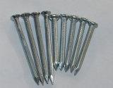 フルートのすねが付いている電流を通された具体的な鋼鉄釘