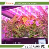 LED Keisue crescer a luz com espectro completo para uso doméstico Fazenda Vertical