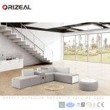 Sofà modulare del tessuto caldo di vendita di Orizeal, sofà sezionale modulare moderno di nuovo modo (OZ-OSF029)