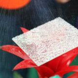 명확한 플라스틱 폴리탄산염에 의하여 돋을새김되는 장 공간 플라스틱 천장판