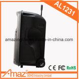 altofalante portátil de 12inch Bluetooth de Guangzhou Temeisheng