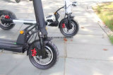 600W Electric Motorcycle AVEC F/R Suspension 60V/20Ah