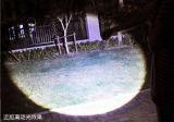 Оптовая торговля Alibaba алюминиевые водонепроницаемые 10W светодиодный фонарик фонарик