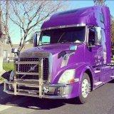 Wacht van het Traliewerk van de Herten van de Vrachtwagen van Amerika van de fabriek de Op zwaar werk berekende