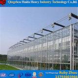 Estufa de vidro do preço de fábrica para pepino Growing
