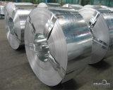 Striscia più bassa superiore dell'acciaio inossidabile di tasso