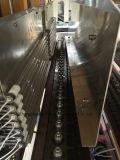 5L Fruchtsaft-Flaschen-Blasformen-Maschine