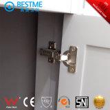 Governo di stanza da bagno di legno solido del nuovo prodotto (BY-X7094)