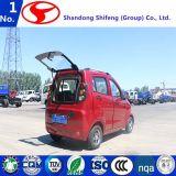 タイプ四輪電気手段、Shifeng D503/Electro車または3荷車引きまたは電気バイクのスクーターまたは自転車または電気オートバイまたはMotorcyの便利な操作
