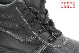 De Schoenen van de Teen van het staal & van de Veiligheid van de Bodem