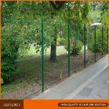 Frontière de sécurité enduite verte de treillis métallique de PVC
