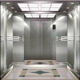 Ascenseur de passager de LMR d'ascenseur de Shandong Fujizy