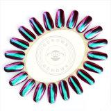 Pigmento al neon Shinning del bicromato di potassio di arte del chiodo della polvere di scintillio del Chameleon dello specchio