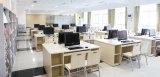 학생 (OD-143)를 위한 학교 가구 컴퓨터 책상