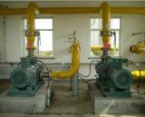 Entschwefelung-Aufsatz des Biogas-5000nm3/D/chemischer Wäscher