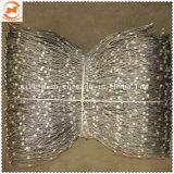 Rete fissa della maglia della fune metallica dell'acciaio inossidabile/rete fissa maglia del giardino zoologico