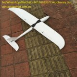 EPO-Schaumgummi-Fläche-Segelflugzeug